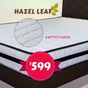 Hazel leaf(2)